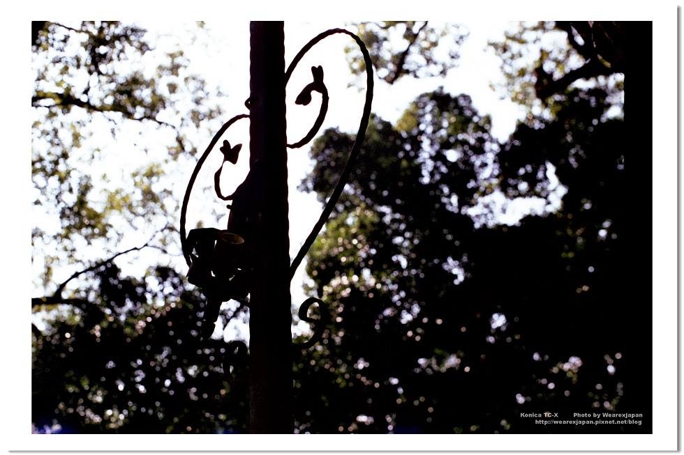 Negative0-02-02(1).jpg