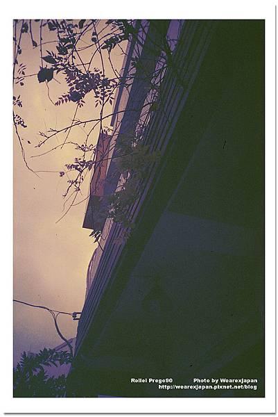 Photo26_29.jpg