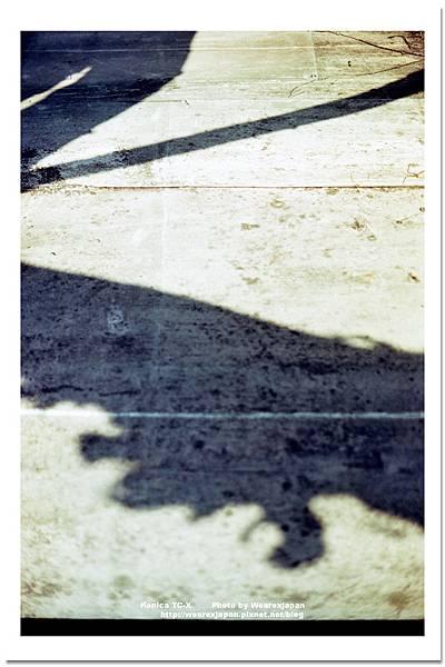 Negative0-06-03(1).jpg