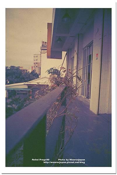 Photo34_37.jpg