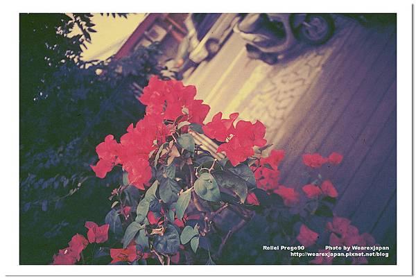 Photo27_30.jpg