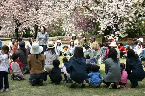 日本-新宿御院-櫻花樹下05.jpg