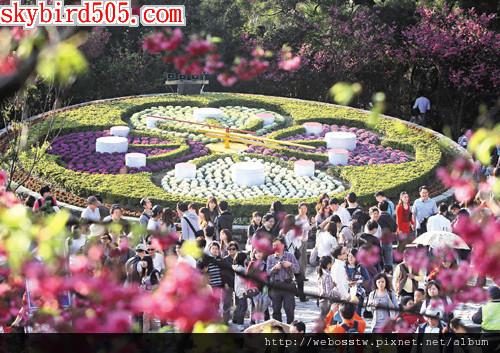 陽明山花季20122