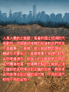 2009.08.11_16.21.04_2.png