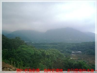新林路景觀農地 (2)