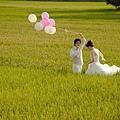 自助婚紗/婚紗照/婚紗攝影