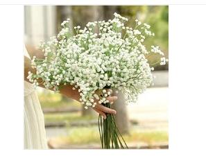 婚紗攝影拍照道具出租-滿天星NT$50元