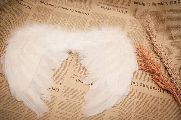 婚紗拍攝道具