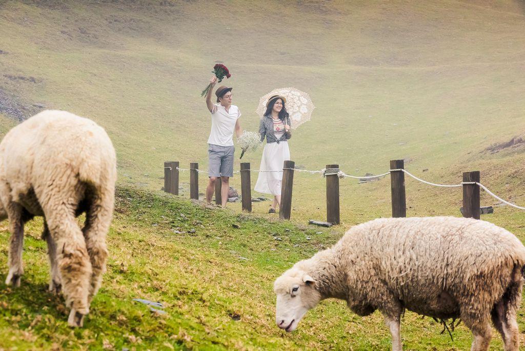 台灣婚紗攝影-台中清境農場(5)