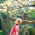 【藝術照】【高雄】感謝Lili選擇與推薦