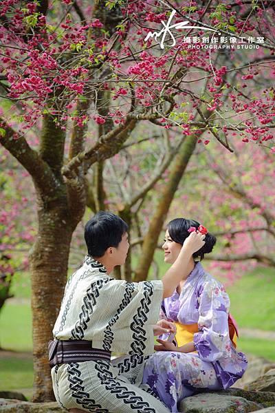 自助婚紗婚紗照-櫻花季
