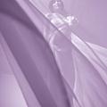 孕婦照@台南婚紗工作室