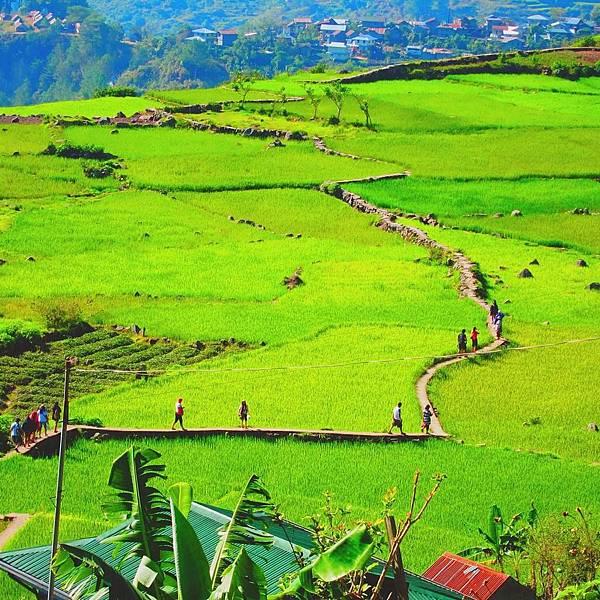 科迪勒拉 Cordilleras 巴達德 Bated 邦雅安 Bangaan 洪瑞 Hungduan 梅悠瑤 Mayoyao 納加卡丹 Nagacadan  .jpg
