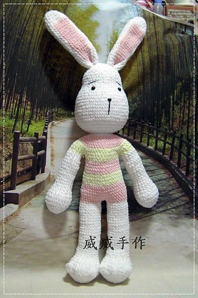 擁抱兔兔6.JPG