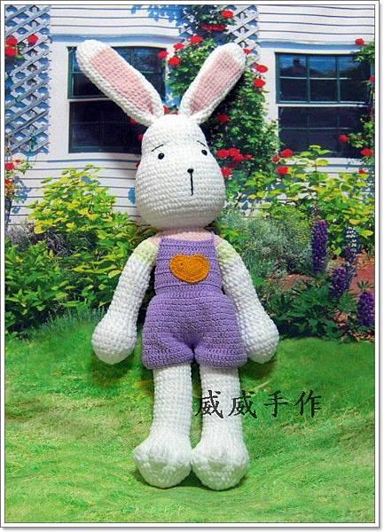 擁抱兔兔5.JPG