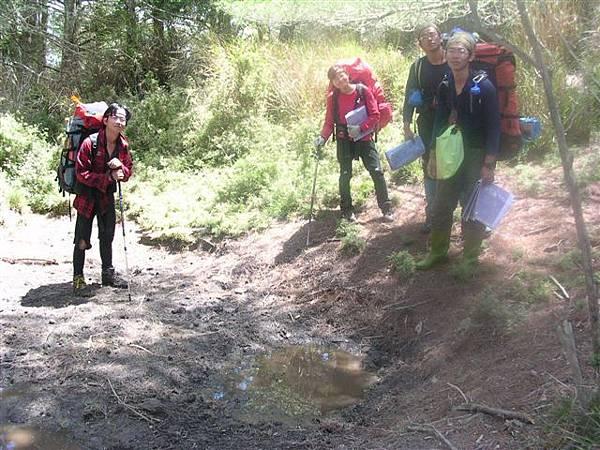 白松山旁的泥巴池