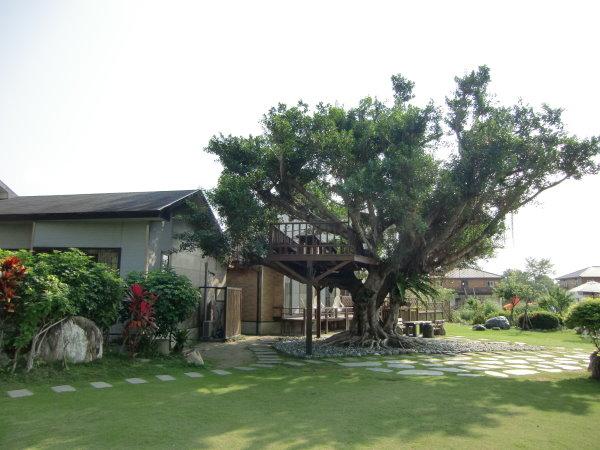 金澤居的樹屋