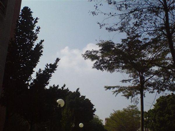 天氣真好~
