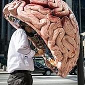 """大腦最""""愛""""六類食物"""