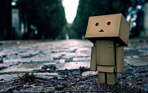 Danbo_Danboard_photo_191437