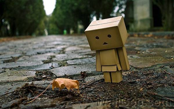 Danbo_Danboard_photo_211639