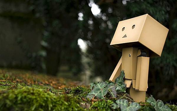 Danbo_Danboard_photo_221740