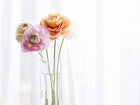 interior_sweet_flowers_art_13014