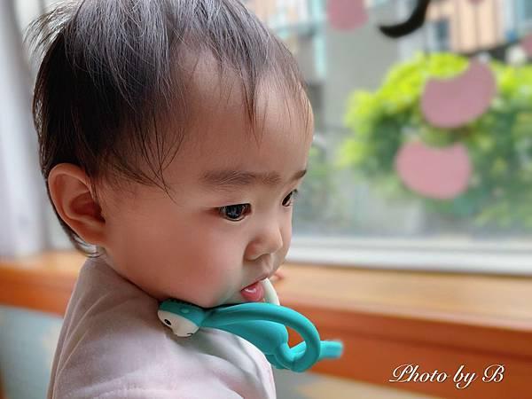 Matchstick Monkey_200321_0007.jpg