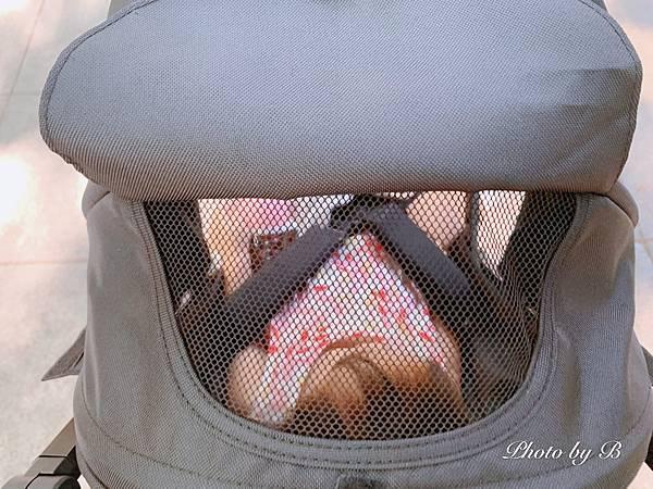 嬰兒推車_200803_25.jpg