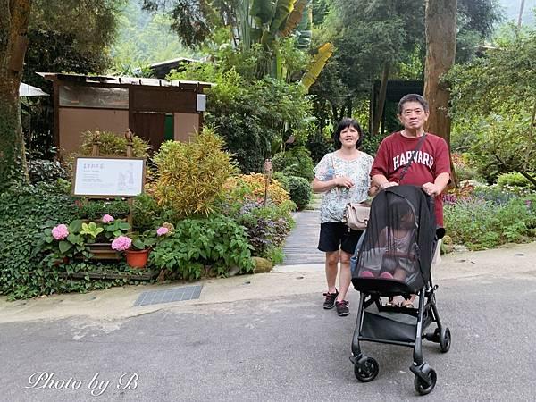 嬰兒推車_200819_1.jpg