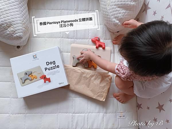 泰國積木_200913_11.jpg