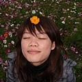 小綠和花花