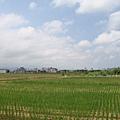 第二天  台北俗很少看到的田園風光