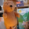 20110626 明信片的主角小熊