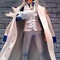 海軍上將 - 青雉