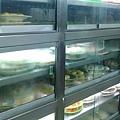 松江火鍋的菜櫃(我在說什麼 XD)跟一般火鍋不同,是以盤子計價的喔~