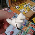 20110724 立體小熊磁鐵明明超可愛的