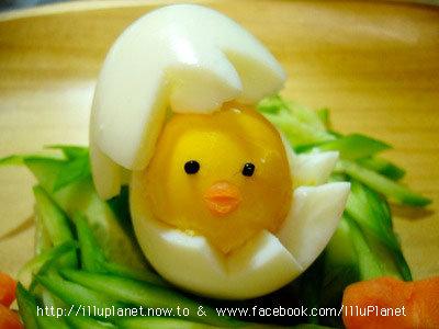 白煮蛋小雞.jpg