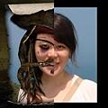 相片對照-Pirate weiduck!
