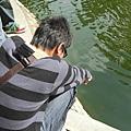 在池塘邊劃圈圈的ㄧ植被表可憐罐頭ㄦ