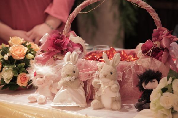 大姐共獻的兔兔