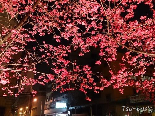 2015-03-03-19-17-51_photo