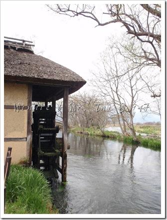 20100408~11名古屋 500