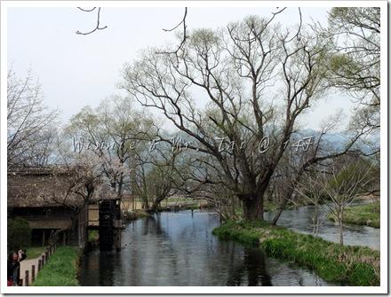 20100408~11名古屋 512