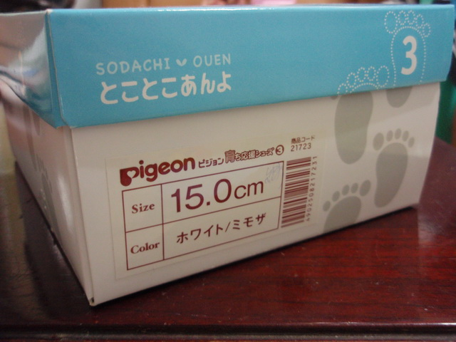 P6260029_調整大小.JPG