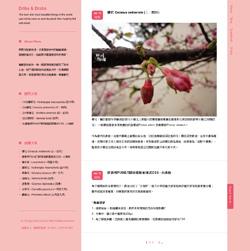 Blog_2_ss