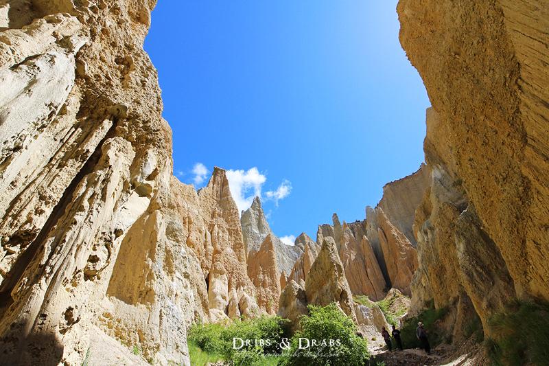紐西蘭黏土懸崖Clay Cliffs