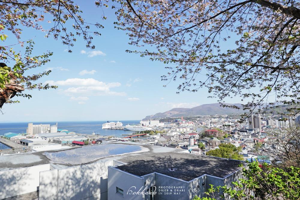 北海道小樽水天宮