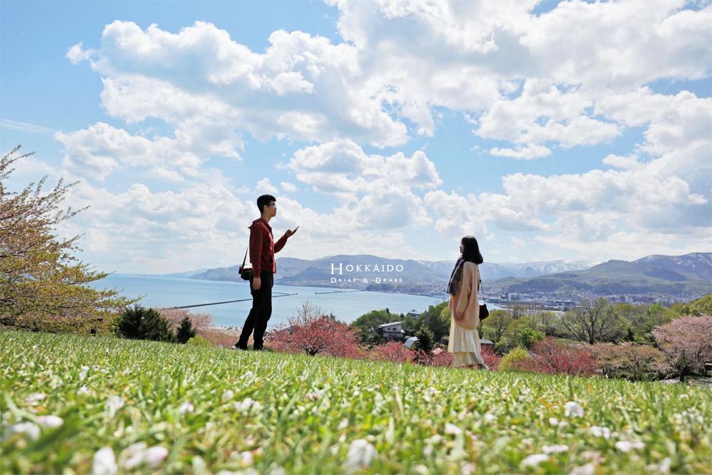 小樽手宮公園小樽賞櫻景點