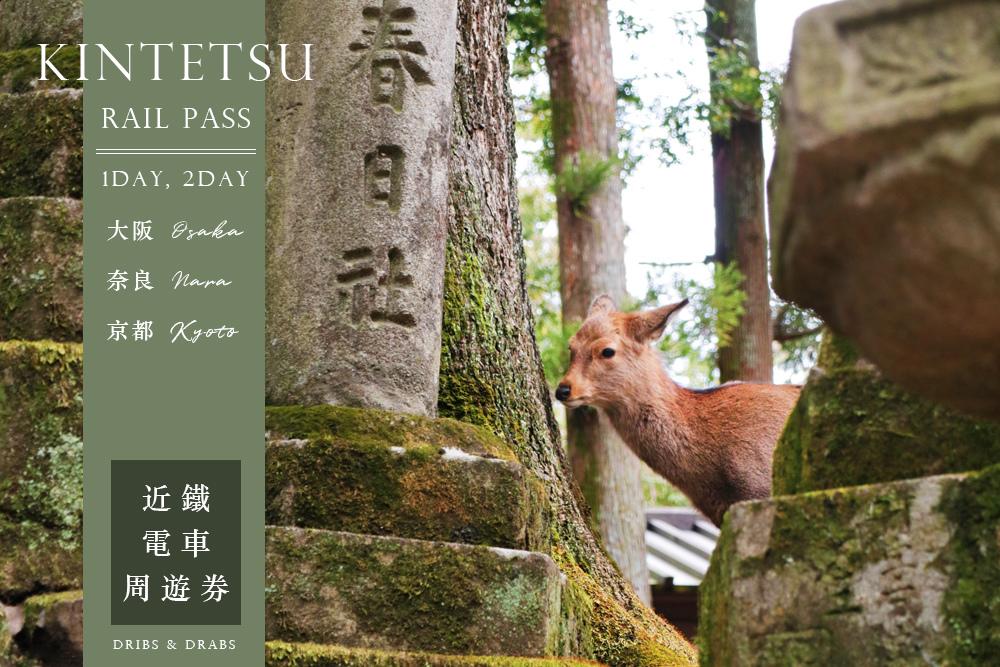 奈良交通近鐵電車周遊券